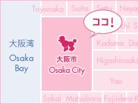 大阪市中心部!