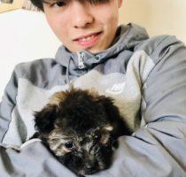 ニコちゃんの新しい飼い主様